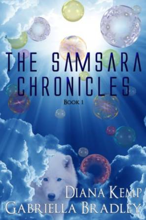 Samsara Chronicles I